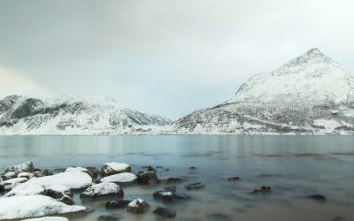Fjord, verstild water